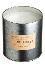 Stort doftljus i metallburk - Silver/Pine forest - Home All | H&M FI 2