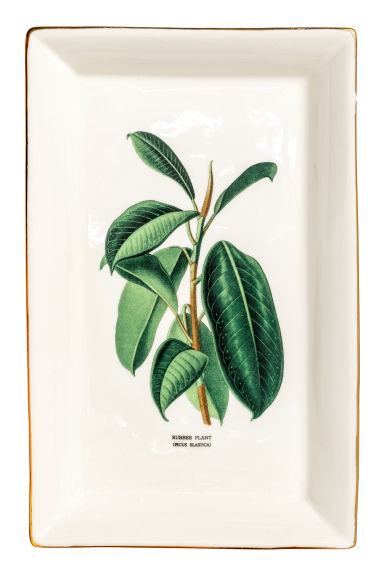 Piatto porcellana con motivo - Bianco naturale/ficus -  | H&M IT