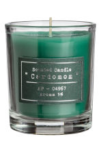 Boxed 4-pack scented candles - Green - Home All | H&M IE 6