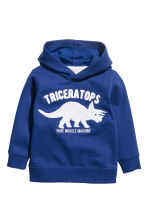 Hooded top with a motif - Blue/Dinosaur - Kids | H&M CN 2