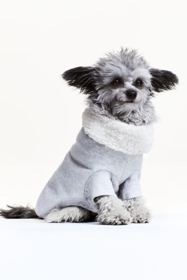 Dog sweatshirt - null - Ladies | H&M CN 1