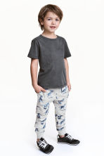 Joggers - Light grey/Dinosaurs - Kids | H&M CN 1