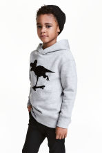 Print-motif hooded top - Grey/Dinosaur - Kids | H&M CN 1