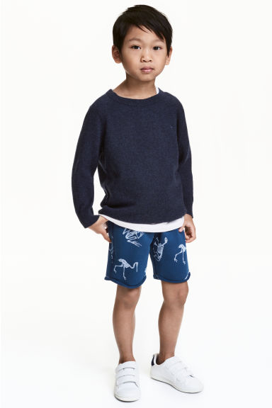 Sweatshirt shorts - Blue/Dinosaur - Kids | H&M CN 1