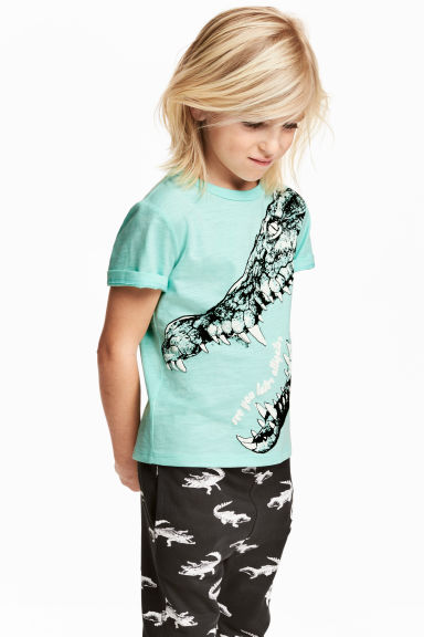 Printed T-shirt - Mint green/Crocodile - Kids | H&M 1