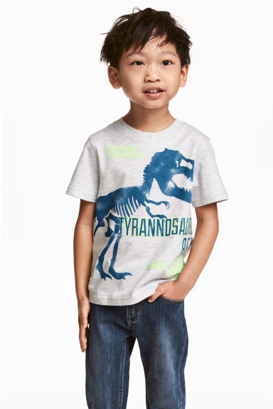 Printed T-shirt - Grey/Dinosaur - Kids | H&M