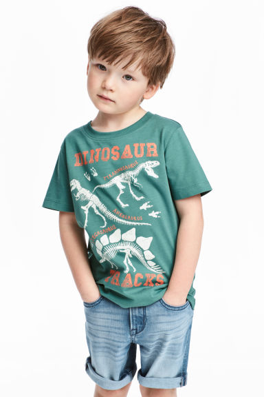 Printed T-shirt - Green/Dinosaur - Kids | H&M CN 1