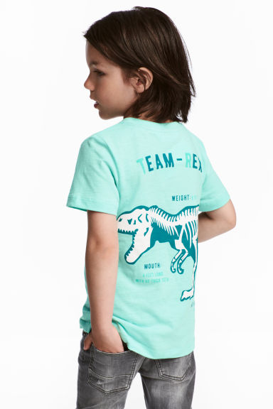 圖案T恤 - Mint/Dinosaur - Kids | H&M 1