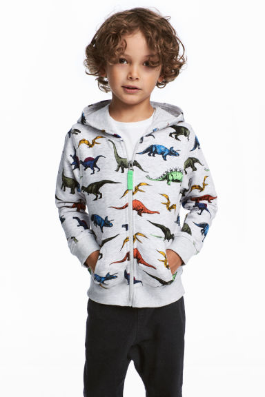 Patterned hooded jacket - Light grey/Dinosaurs -  | H&M