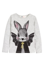 Grey/Rabbit