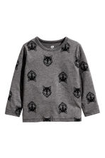 Long-sleeved T-shirt - Dark Grey/Wolf - Kids | H&M CN 2