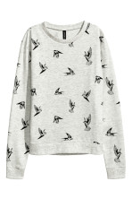 Light grey/Swallows