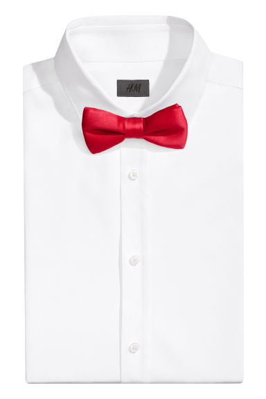 Satin bow tie Model