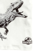 2-pack T-shirts - Green/Jurassic World - Kids | H&M 4