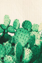 Lavette - Blanc/cactus - Home All | H&M FR 2