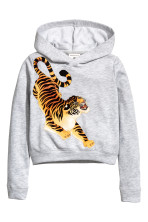 Light grey/Tiger