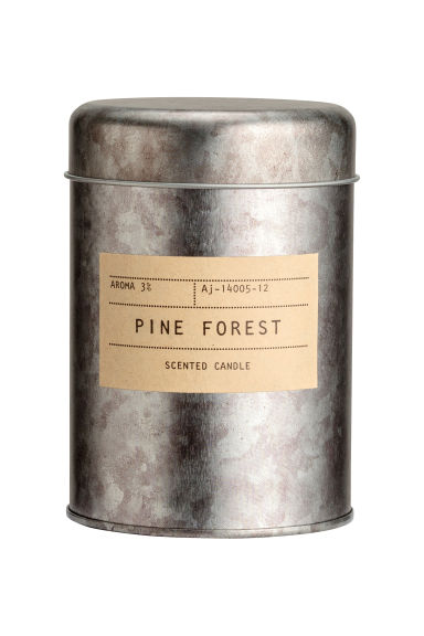 Geurkaars in metalen blik - Zilverkleurig/Pine Forest - HOME | H&M BE 1