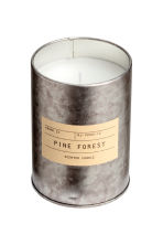 Candela profumata in barattolo - Argentato/Pine Forest - HOME | H&M IT 2