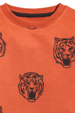 Printed sweatshirt - Rust/Tiger - Kids | H&M CN 3