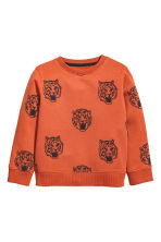 Printed sweatshirt - Rust/Tiger - Kids | H&M CN 2