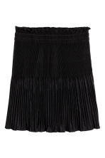 Pleated skirt - Black - Ladies | H&M CA 2