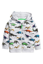Light grey/Dinosaurs