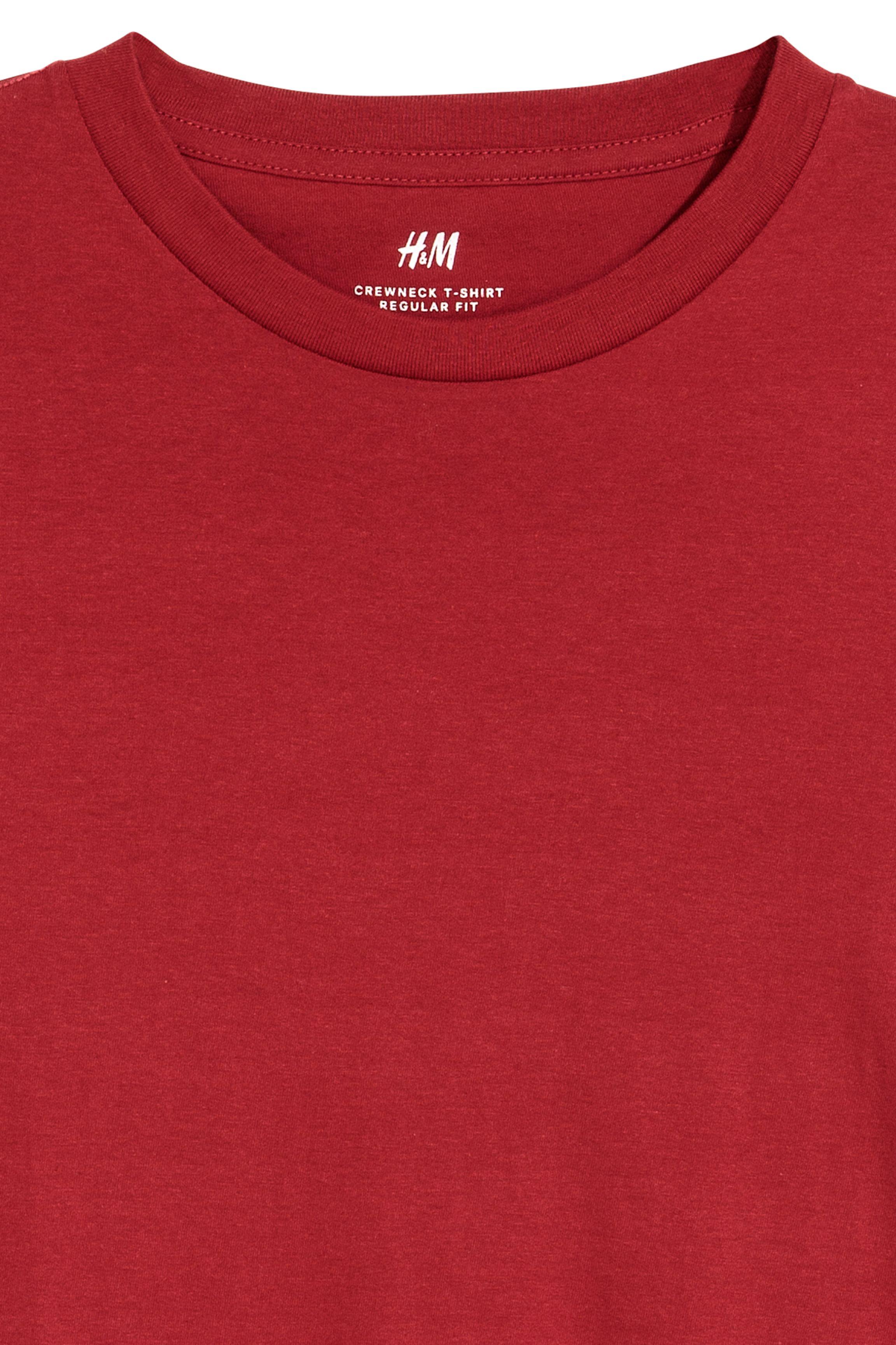 Long-sleeved Regular Ft Shirt