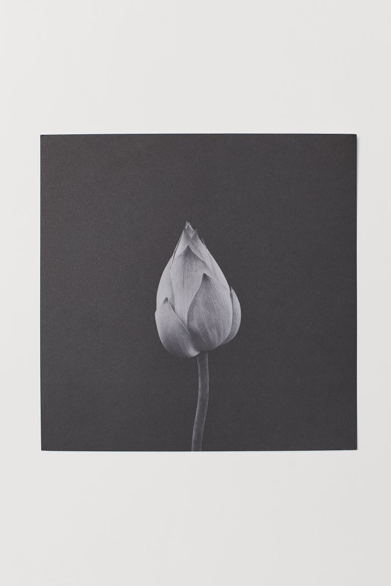 Poster - Black/flower bud - Home All | H&M US