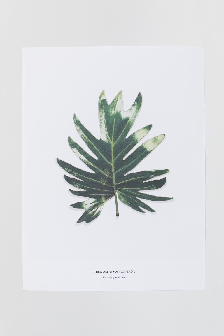 Affiche - Blanc/feuilles - Home All | H&M CA