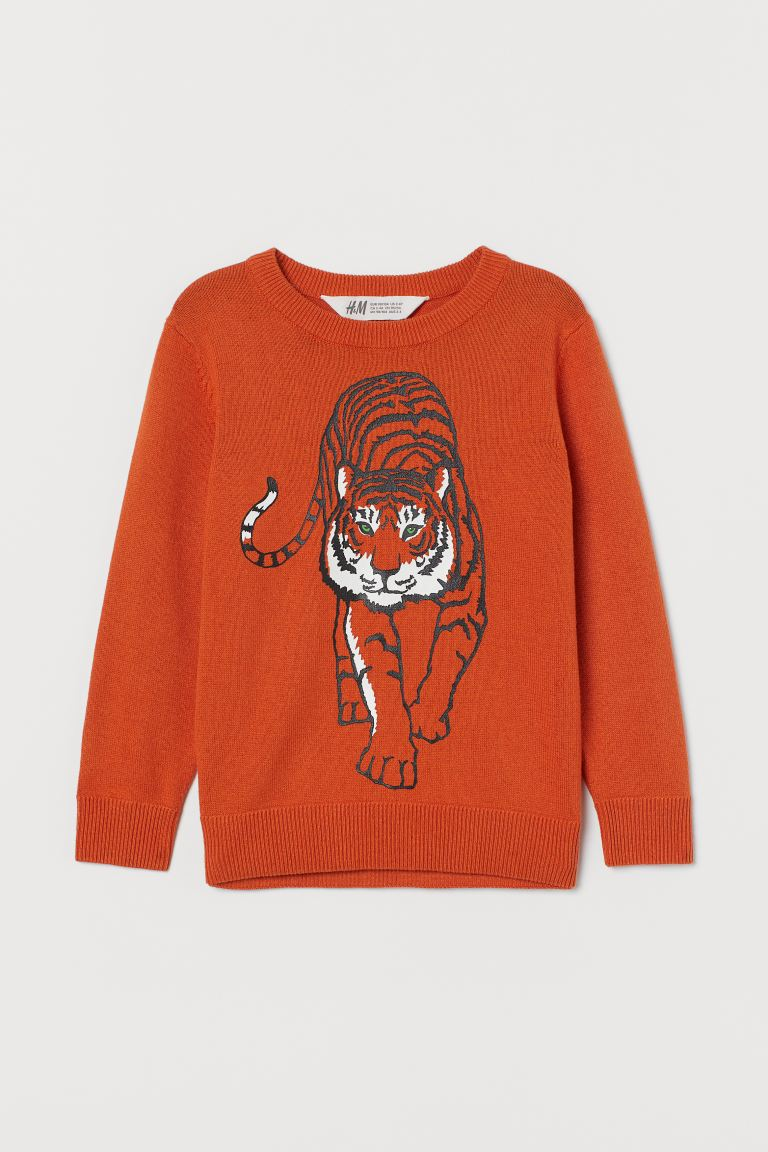Fine-knit jumper - Orange/Tiger - Kids | H&M IE