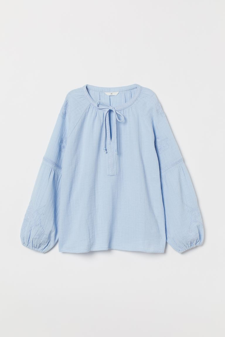Cotton blouse with embroidery - Light blue - Ladies | H&M GB