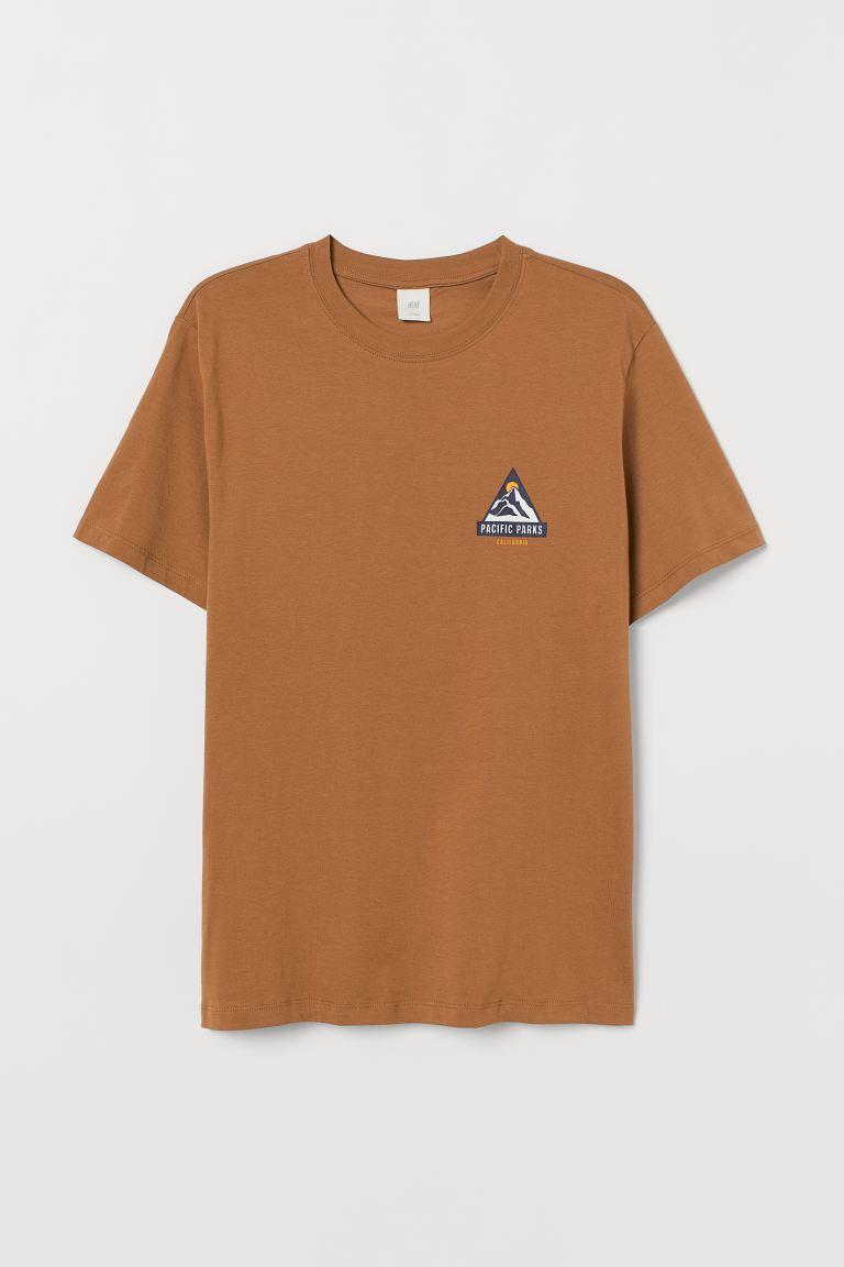 T-shirt with Printed Design - Brown/Pacific Parks - Men | H&M US