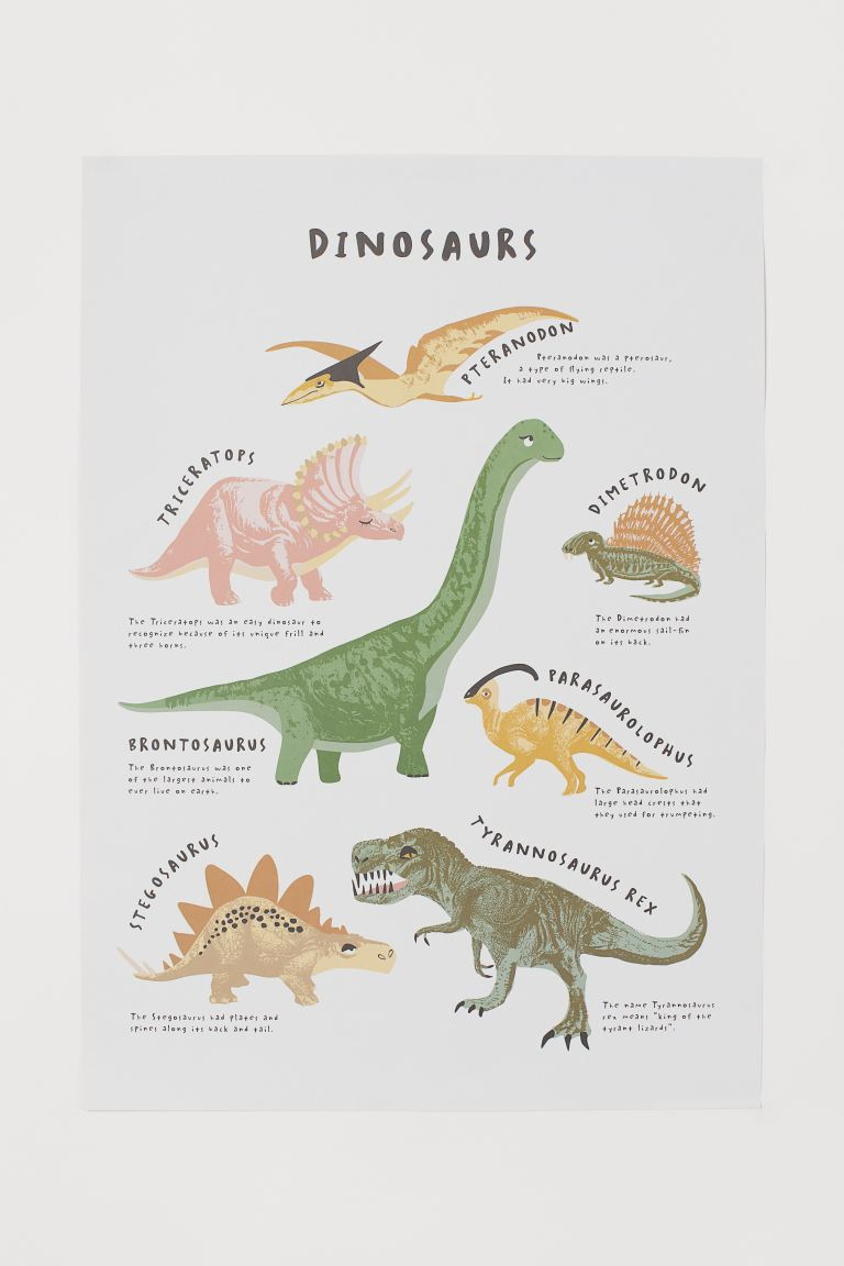 Poster - Blanc/dinosaures - Home All | H&M FR