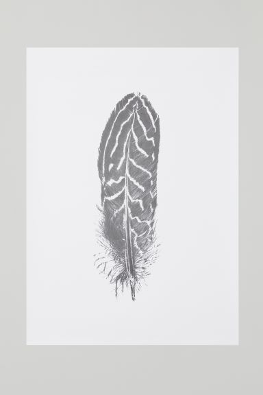Poster - White/Feather - Home All | H&M GB