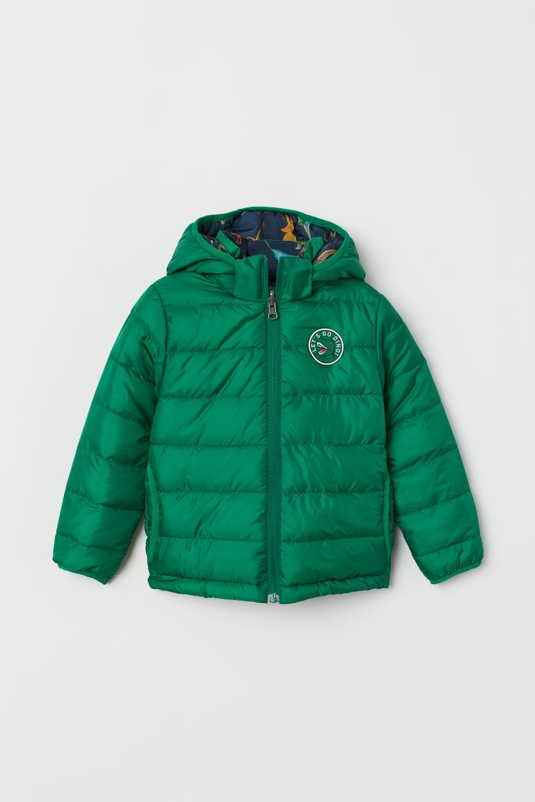 Padded Jacket - Green/dinosaurs -  | H&M US