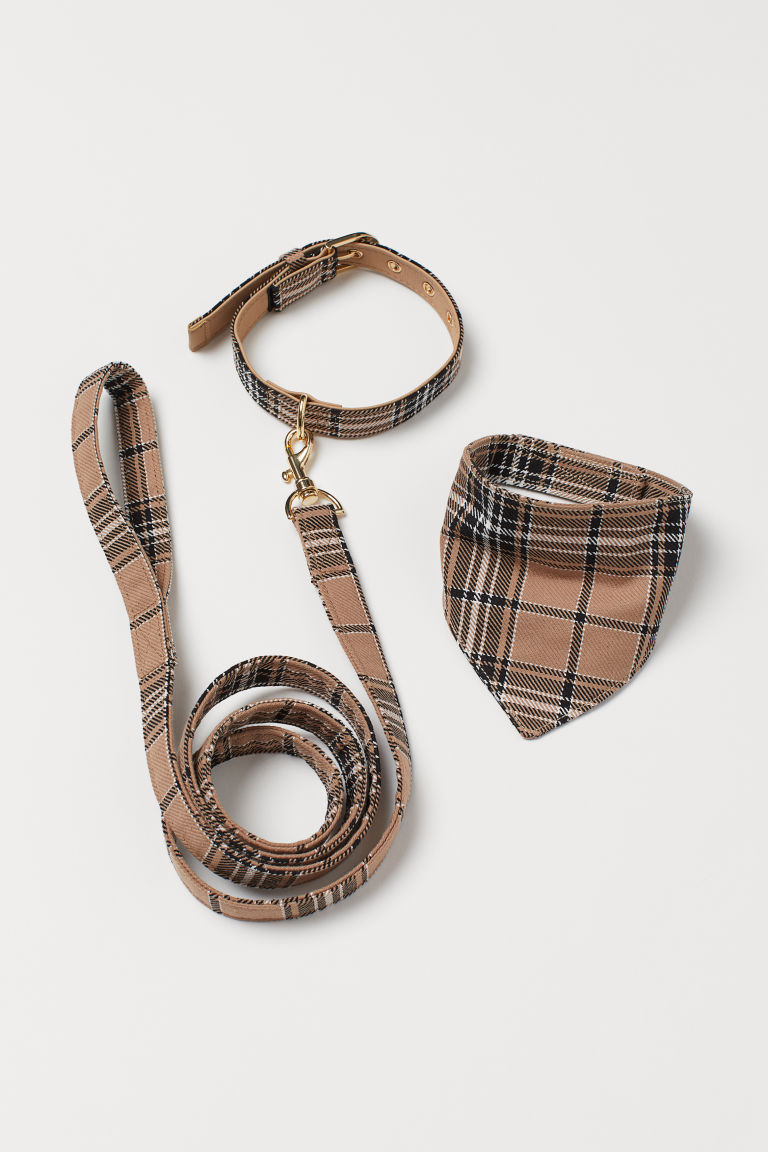 Dog Leash and Scarf - Beige/checked - Ladies | H&M US