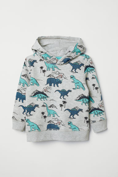 Printed hooded top - Grey marl/Dinosaurs - Kids | H&M CN