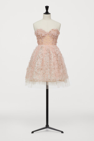 Short tulle dress with lace