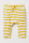 Yellow/White striped