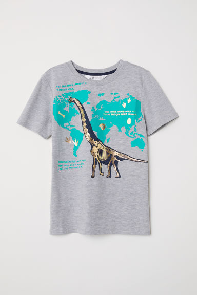Printed T-shirt - Grey marl/Dinosaurs - Kids | H&M