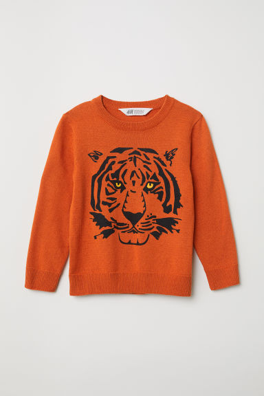 Fine-knit jumper - Orange/Tiger - Kids | H&M CN