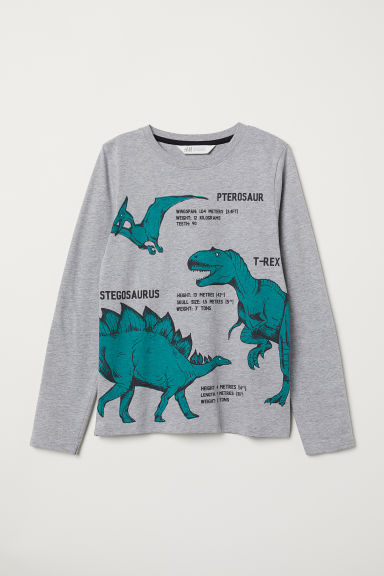 Printed jersey top - Light grey marl/Dinosaurs - Kids | H&M