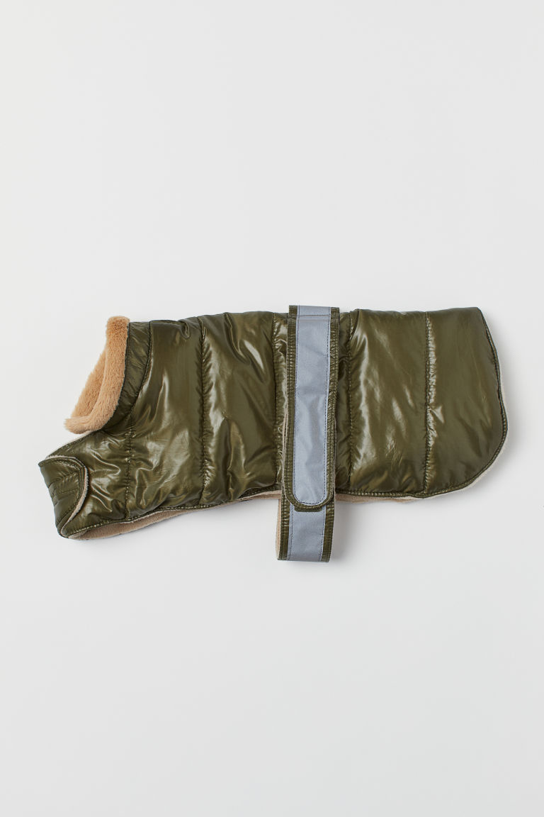 Jacket for a dog - Khaki green - Ladies | H&M CN