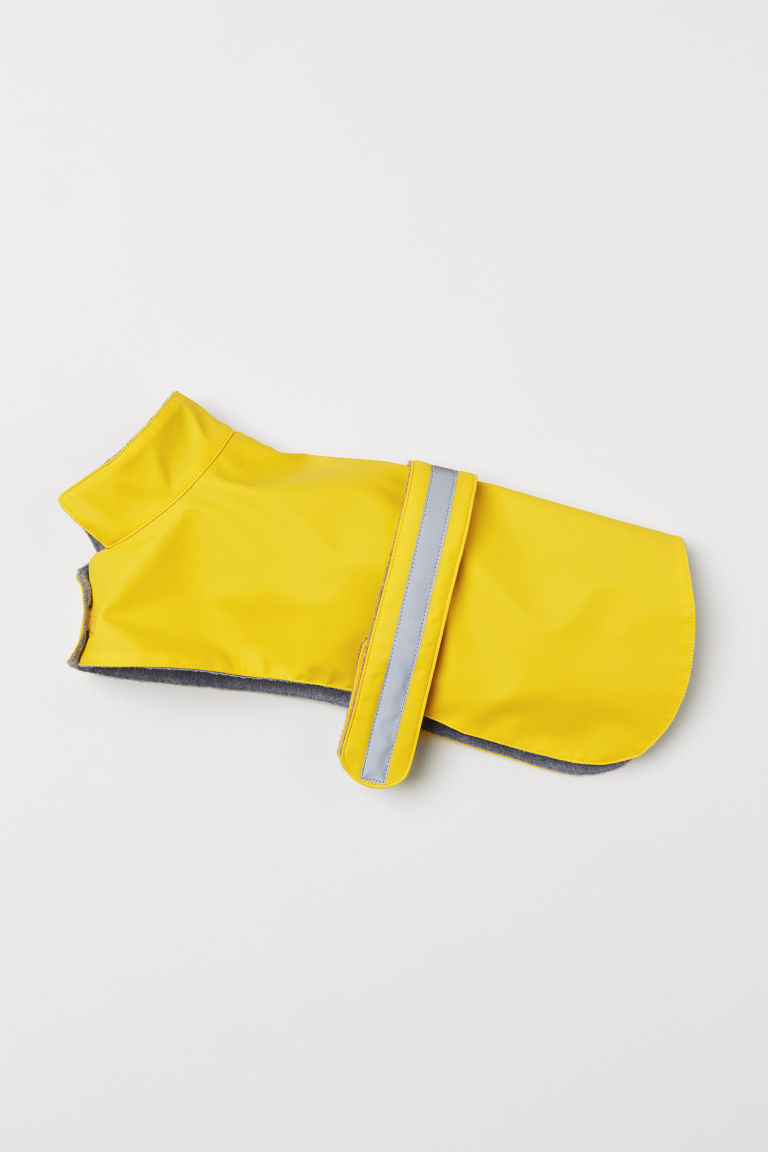 Rain jacket for a dog - Yellow - Men | H&M