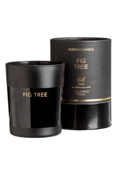 Scented candle in glass holder - Black/Fig tree - Home All | H&M IE