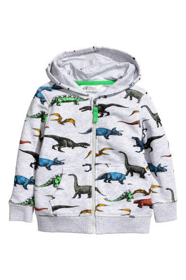 Patterned hooded jacket - Light grey/Dinosaurs -  | H&M CN