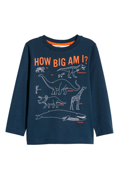 Long-sleeved jersey top - Dark blue/Dinosaurs - Kids | H&M