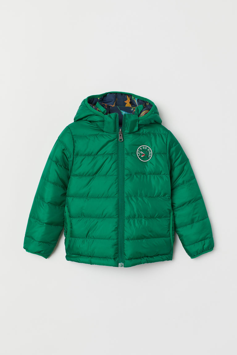 Padded jacket - Green/Dinosaurs - Kids | H&M CN