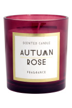 Burgundy/Autumn rose