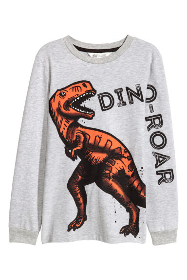Printed jersey top - Grey marl/Dinosaur - Kids | H&M GB